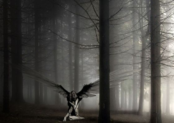 Angel in the Forest. Black and White Fantasy Art Print/Poster. Sizes: A4/A3/A2/A1 (002396)